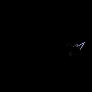 logometeorn