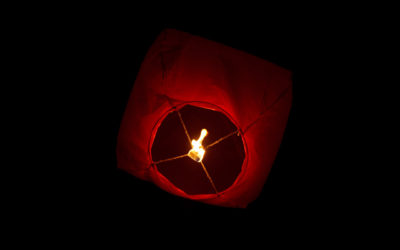 paper-lantern-11295719969bwe