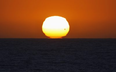 The planet Venus makes its transit across a setting sun on the Pacific Ocean in Encinitas, California June 5, 2012. (MIKE BLAKE,REUTERS)