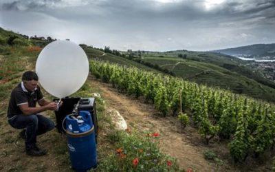 https://www.sciencesetavenir.fr/nature-environnement/des-ballons-charges-de-sels-contre-la-grele-ennemie-n-1-des-vignes_124494